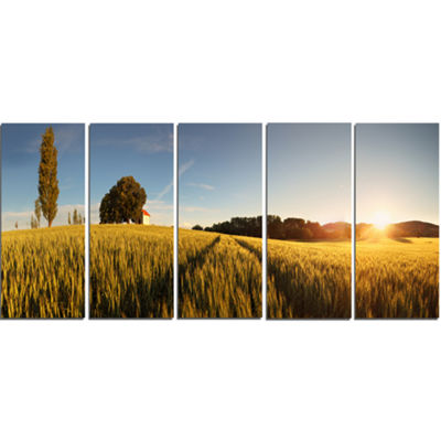 Designart Sunset Over Wheat Field in Slovakia Photography Canvas Art Print - 5 Panels