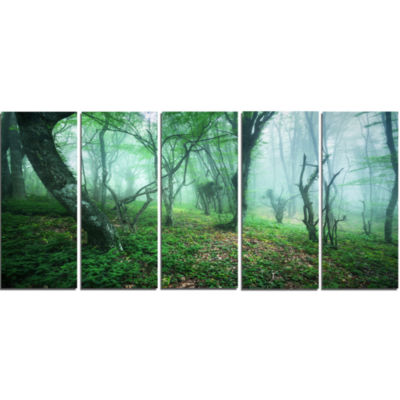 Trail Through Green Forest Landscape Photography Canvas Print - 5 Panels