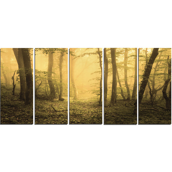 Trail Through Yellow Foggy Forest Landscape Photography Canvas Print - 5 Panels