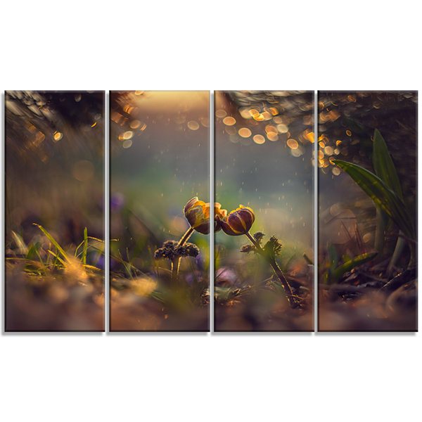 Designart Two Spring Flowers Floral Photography Art - 4 Panels