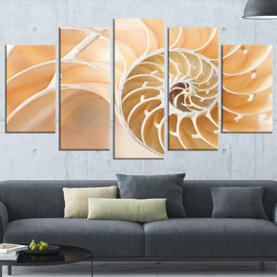 Designart Brown Nautilus Shell Pattern Abstract Canvas Art Print - 4 Panels