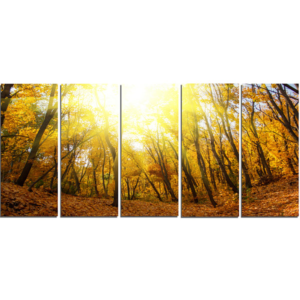 Designart Yellow Autumn Forest In Sunlight ForestCanvas Art Print - 5 Panels