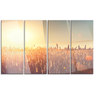 Designart Rural Land Under Shining Sun Large Landscape Canvas Art - 4 Panels