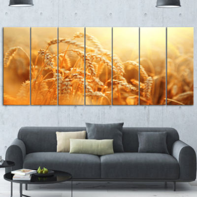 Designart Ears Of Golden Wheat Close Up Large Landscape Canvas Art - 5 Panels