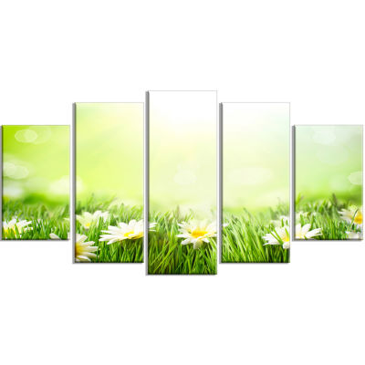 Spring Meadow With Daisies Large Abstract Canvas Wall Art - 5 Panels