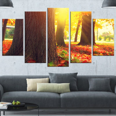 Autumn Trees In The Sunlight Large Landscape Wrapped Canvas Art - 5 Panels