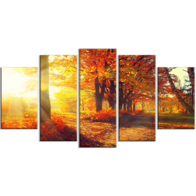 Autumnal Trees In Sunrays Large Landscape WrappedCanvas Art Print - 5 Panels