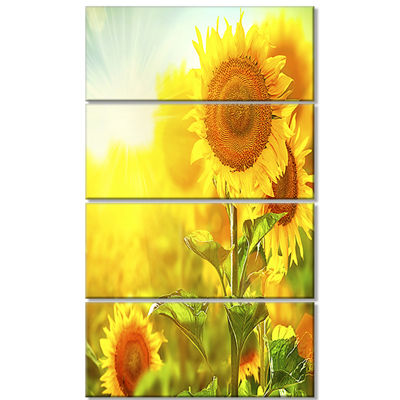 Designart Bright Sunflowers Blooming On Field Large Animal Canvas Art Print - 4 Panels