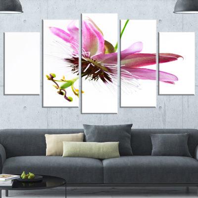 Designart Passiflora Flower Over White Large Animal Canvas Art Print - 5 Panels
