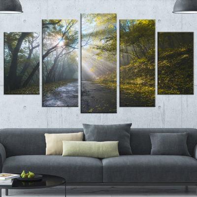 Designart Road In Autumn Forest At Sunset Large Landscape Canvas Art Print - 4 Panels