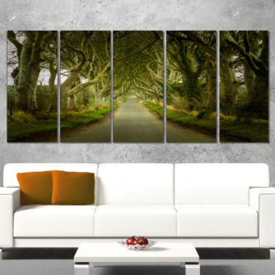 Dark Hedges Road Through Old Trees Landscape Canvas Art Print - 5 Panels
