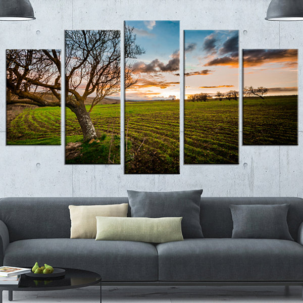Designart Sunset In Sardinia Grassland Extra LargeLandscapeCanvas Art Print - 4 Panels