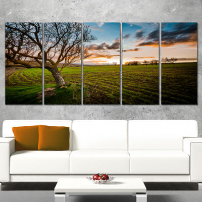 Designart Sunset In Sardinia Grassland Extra LargeLandscapeCanvas Art Print - 5 Panels