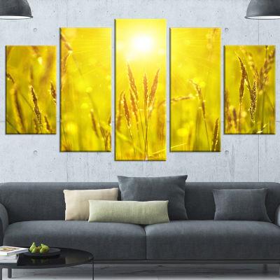Designart Yellow Grass Flower At Sunset LandscapeWrapped Canvas Art Print - 5 Panels