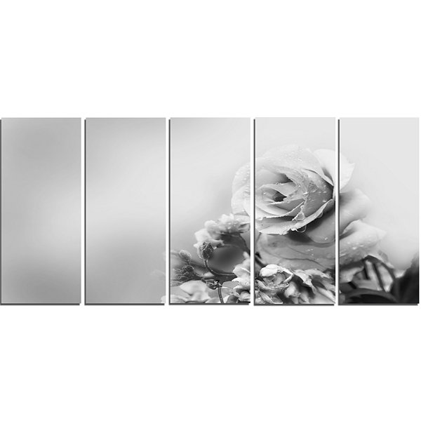 Design Art Black And White Rose In Spring. FloralCanvas Art Print - 5 Panels