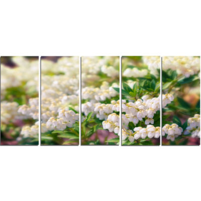 Beautiful Blooming White Flowers Floral Canvas ArtPrint - 5 Panels