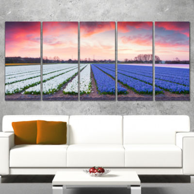 Fields Of Blooming Hyacinth Flowers Landscape Canvas Art Print - 5 Panels