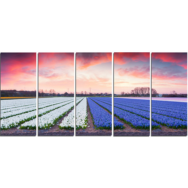 Designart Fields Of Blooming Hyacinth Flowers Landscape Canvas Art Print - 5 Panels