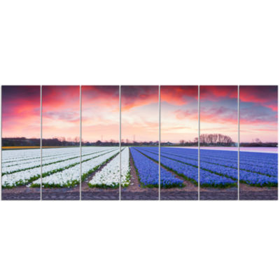 Fields Of Blooming Hyacinth Flowers Landscape Canvas Art Print - 7 Panels