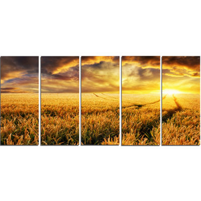 Designart Amazing Sunset Over Yellow Field Landscape Canvas Art Print - 5 Panels