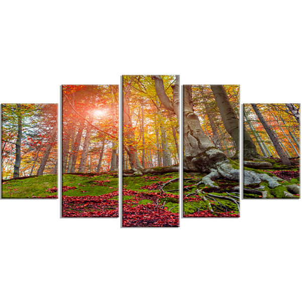 Designart Colorful Autumn Trees In Forest Large Landscape Wrapped Canvas Art Print - 5 Panels