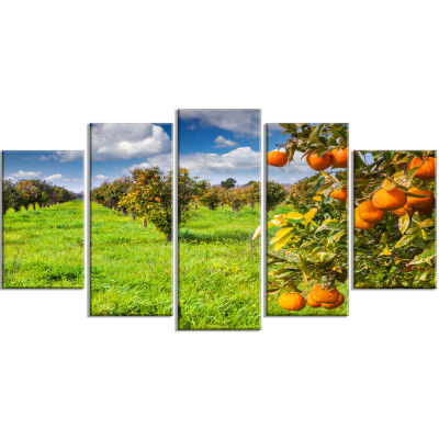 Bright Green Grass In Orange Garden Large Landscape Wrapped Canvas Art Print - 5 Panels