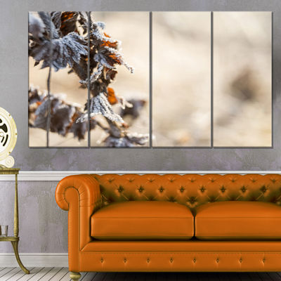 Designart Beautiful Grass Covered With Ice FloralCanvas Art Print - 4 Panels