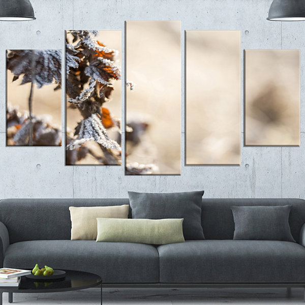 Design Art Beautiful Grass Covered With Ice FloralCanvas Art Print - 5 Panels