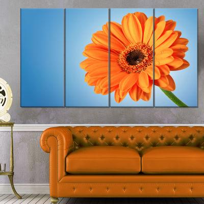 Orange Daisy Gerbera Flower On Blue Floral CanvasArt Print - 4 Panels