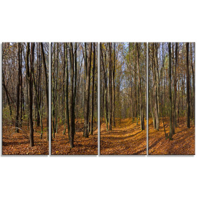 Designart Dense Fall Forest Panorama Forest CanvasArt Print- 4 Panels