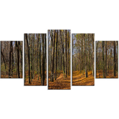 Designart Dense Fall Forest Panorama Forest Wrapped Canvas Art Print - 5 Panels