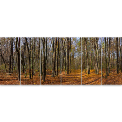 Dense Fall Forest Panorama Forest Canvas Art Print- 6 Panels