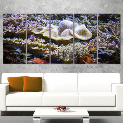 Beautiful Seabed With Fish Large Landscape CanvasArt - 5 Panels
