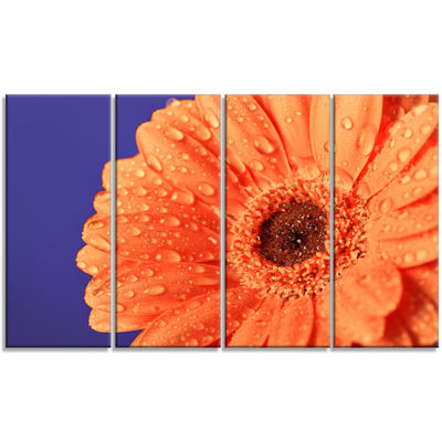 Designart Orange Daisy On Purple Background FloralCanvas Art Print - 4 Panels