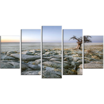 Baobab Tree On Rocky Terrain Large Landscape Wrapped Canvas Art - 5 Panels