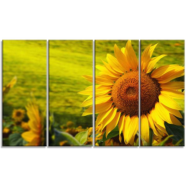 Design Art Tuscany Sunflowers On Green Floral Canvas Art Print - 4 Panels