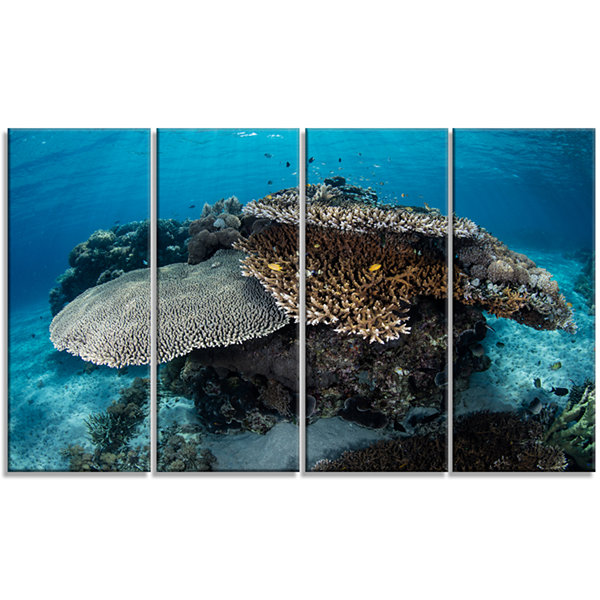 Design Art Corals And Fish In Komodo National ParkSeashore Canvas Art Print - 4 Panels