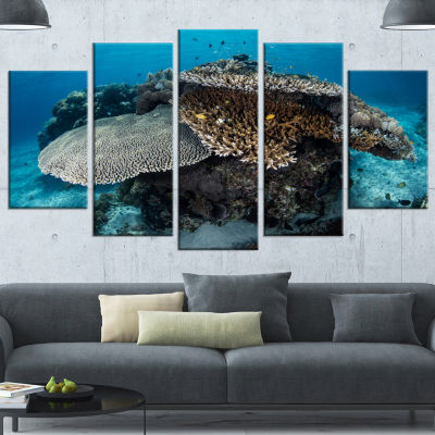 Designart Corals And Fish In Komodo National ParkSeashore Wrapped Canvas Art Print - 5 Panels