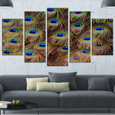 Peacock Bird Tail Feathers In Close Up Animal Canvas Art Print - 4 Panels