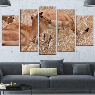 Designart Grants Gazelles Grazing In Grassland Animal Canvas Art Print - 5 Panels