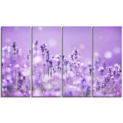 Stunning Purple Lavender Field Landscape Canvas Art Print - 4 Panels