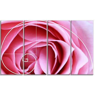 Designart Pink Flower With Spiral Arrangement Floral Canvas Art Print - 4 Panels
