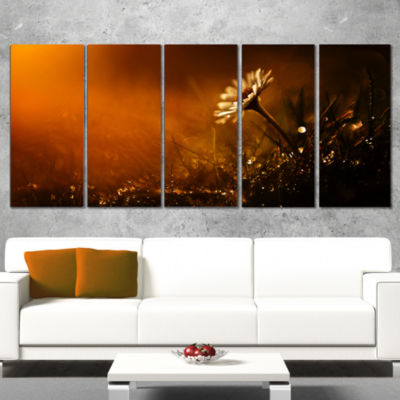 White Wild Flower At Sunset After Rain Large Floral Canvas Art Print - 5 Panels