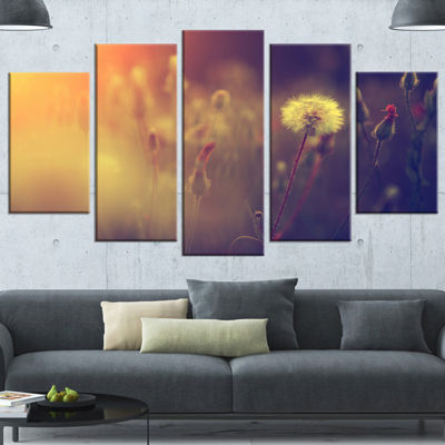 Designart Vintage Photo Of Dandelion Field LargeFloral Wrapped Canvas Art Print - 5 Panels