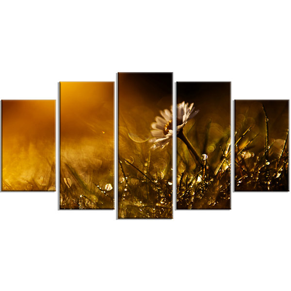 Designart Vintage Wild Flower In Sunset Large Floral Wrapped Canvas Art Print - 5 Panels