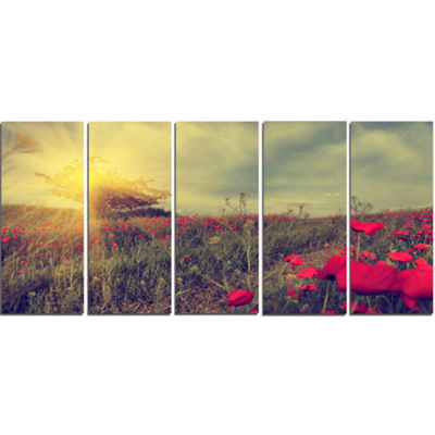 Designart Vintage Photo Of Poppies At Sunset LargeFloral Canvas Art Print - 5 Panels