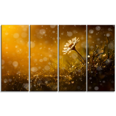 Designart Forest After Rain During Sunset Large Floral Canvas Art Print - 4 Panels
