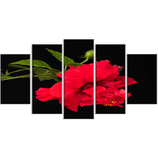 Designart Bright Red Hibiscus On Black Large Floral Wrapped Canvas Art Print - 5 Panels