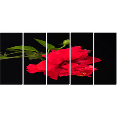 Designart Bright Red Hibiscus On Black Large Floral Canvas Art Print - 5 Panels