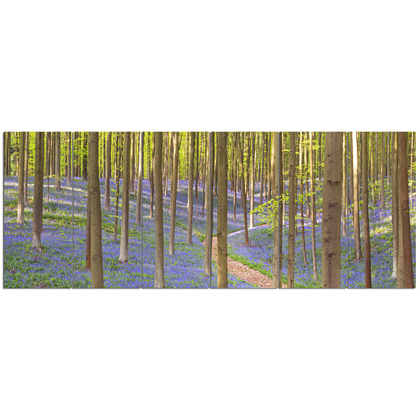 Designart Blooming Bluebell Forest Panorama Landscape Canvas Art Print - 6 Panels